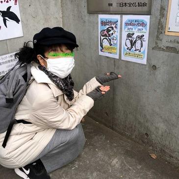 ペンギン案内_2.jpg